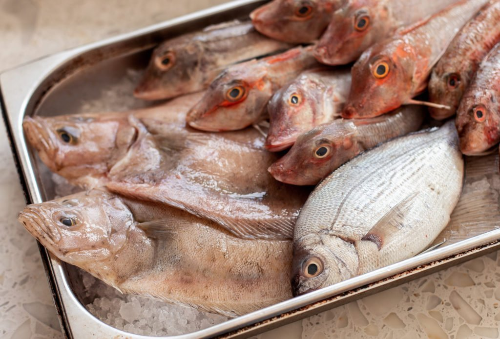 Uncooked fish from Bonnie Gull