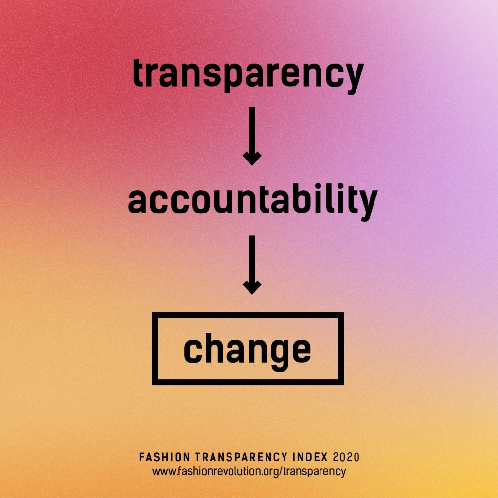 Infographic: Transparency to Accountability to Change