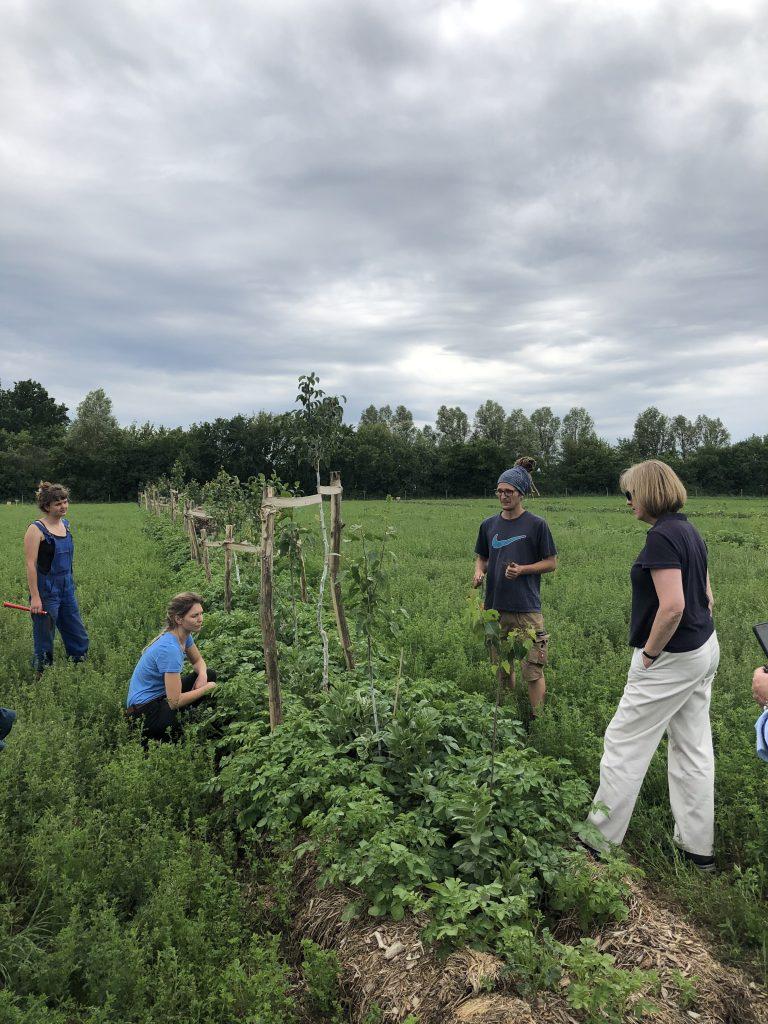 Regenerative organic farming | Gut & Bösel