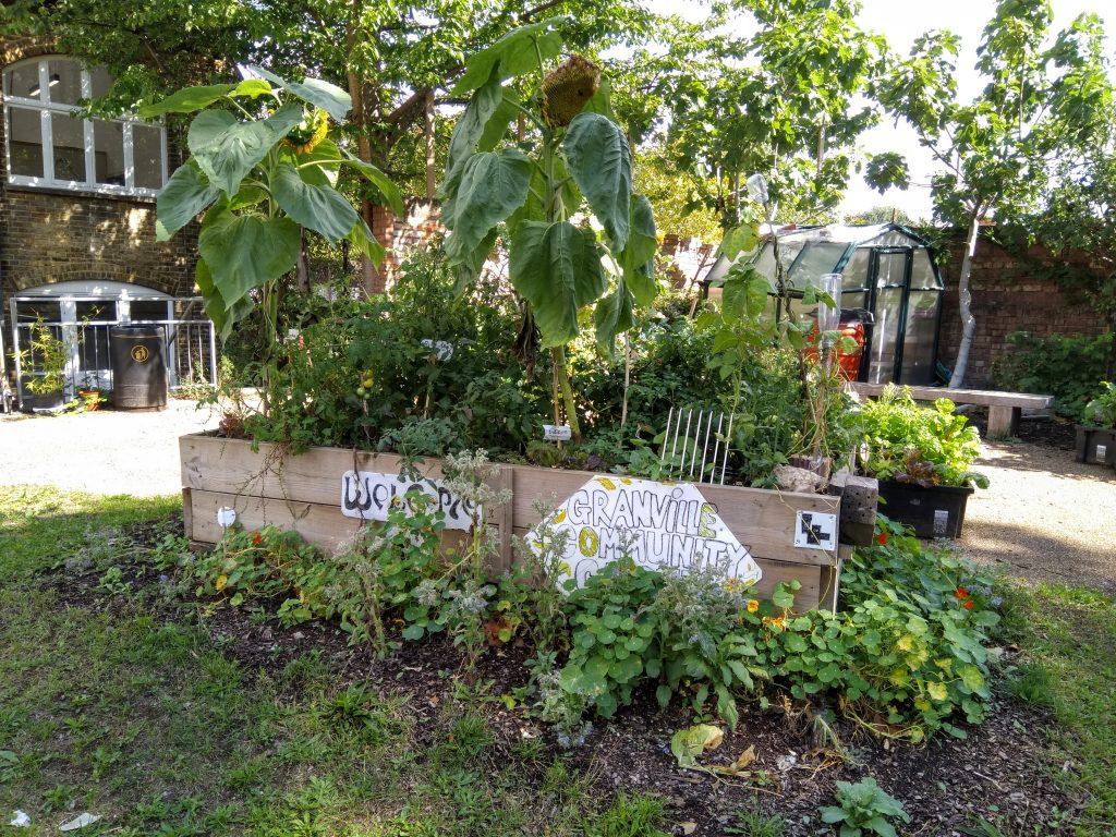 Granville Community Garden