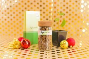 Sustainable Christmas gift | Apostle Coffee